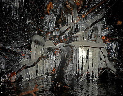 Photograph - Ice Palace by Mark Wiley