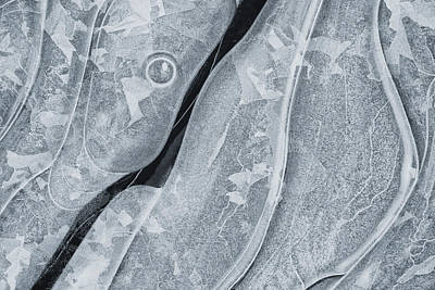 Photograph - Ice Pattern by Denise Bush