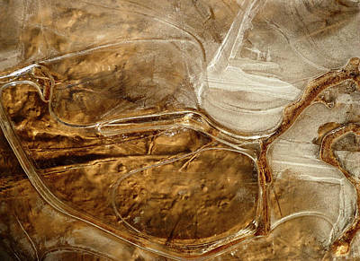 Photograph - Ice Patterns On Dirt by Amelia Racca