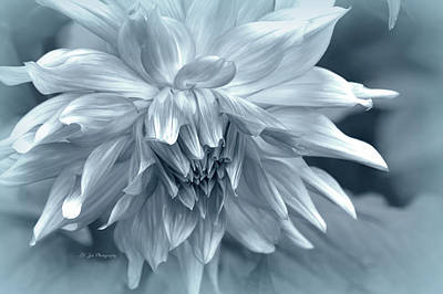 Photograph - Ice Queen by Jeanette C Landstrom