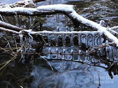 Photograph - Ice Rake by David and Lynn Keller