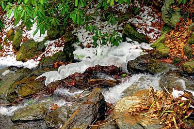 Photograph - Ice Snake by Meta Gatschenberger
