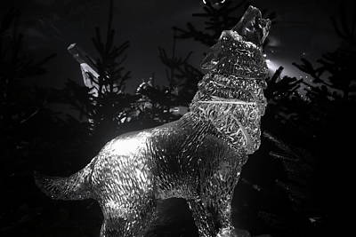 Winter Wonderland Mono Photograph - Ice Wolf by Perggals - Stacey Turner