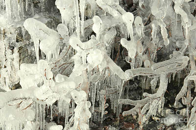 Photograph - Ice Works by Frank Townsley