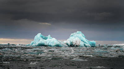 Photograph - Iceberg I by James Billings