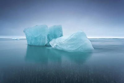 Photograph - Icebergs by Jorge Maia