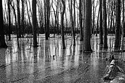 Photograph - Iced Pond Black And White by Debbie Oppermann