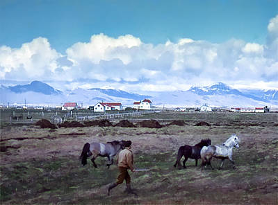 Photograph - Iceland Horses 1962 by Richard Goldman