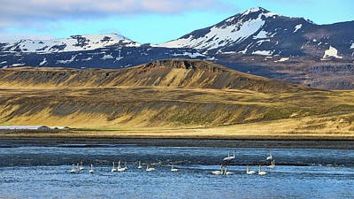 Photograph - Iceland Landscape # 3 by Allen Beatty