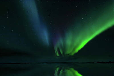 Photograph - Iceland Lights by Maria Coulson