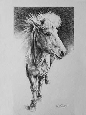 Icelandic Horse Original by Derrick Higgins