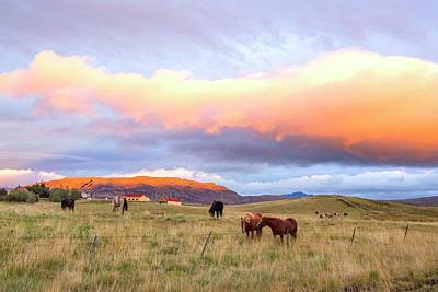 Print featuring the photograph Icelandic Horses Under The Sunset by Brad Scott