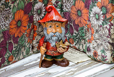 Photograph - Icelandic Knome by Venetia Featherstone-Witty