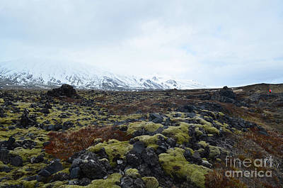 Photograph - Icelandic Landscape Of A Snow Capped Mountain And A Lava Field  by DejaVu Designs