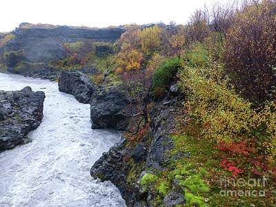 Photograph - Icelandic Stream With Fall Colors by Barbie Corbett-Newmin
