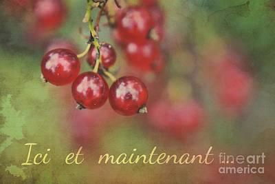Photograph - Ici Et Maintenant  by Aimelle