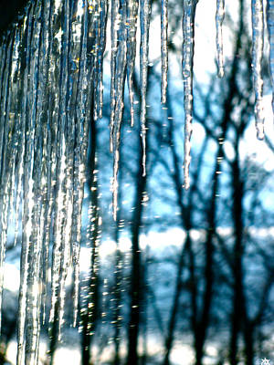 Photograph - Icicle Art Fun 16 by Debra     Vatalaro