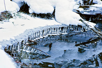 Photograph - Icicle Bells by Patricia Sanders