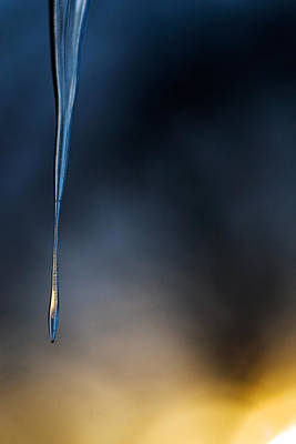 Photograph - Icicle  by Jane Melgaard