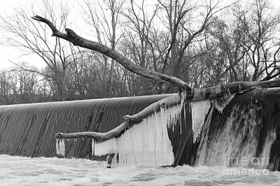 Photograph - Icicle Laden Branch Over The Waterfall by Christopher Lotito