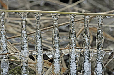 Print featuring the photograph Icicles On A Stick by Glenn Gordon