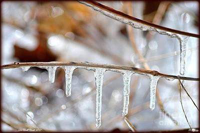 Icicles And Bokeh Art Print by Deb Badt-Covell