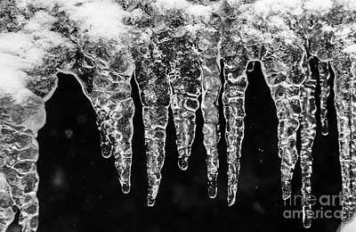 Photograph - Icicles I by Brad Allen Fine Art