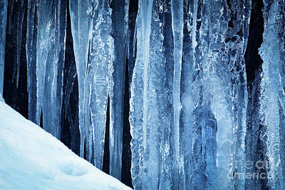 Photograph - Icicles by Inge Johnsson