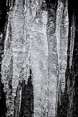 Photograph - Icicles, No. 2 Bw by Belinda Greb