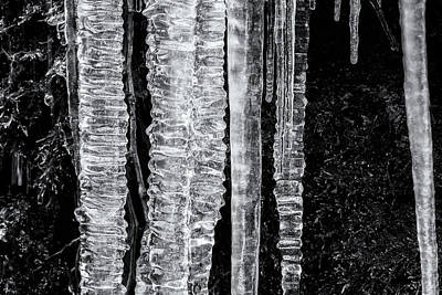 Photograph - Icicles, No. 4 Bw by Belinda Greb