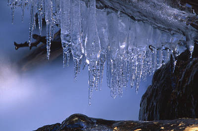 Icicles - North Fork Bishop Creek Art Print by Soli Deo Gloria Wilderness And Wildlife Photography