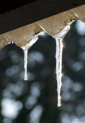 Photograph - Icicles On Roof by Wim Lanclus