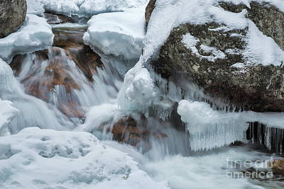 Photograph - Icicles by Sharon Seaward