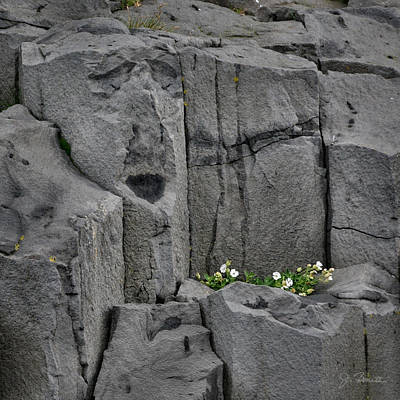 Photograph - Iclandic Stone Serenade by Joe Bonita