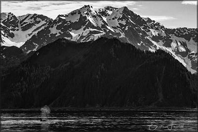 Photograph - Iconic Alaska by Erika Fawcett