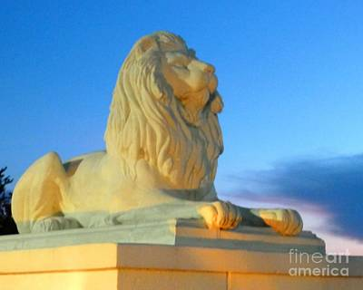 Photograph - Iconic Guardian by Barbie Corbett-Newmin
