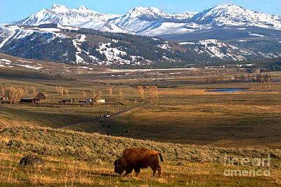 Photograph - Iconic Yellowstone Landscape by Adam Jewell