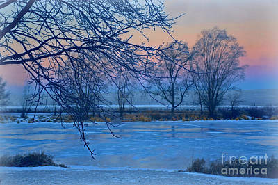Photograph - Icy Beauty by Kathy M Krause