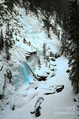 Photograph - Icy Blues In The Forest by Adam Jewell