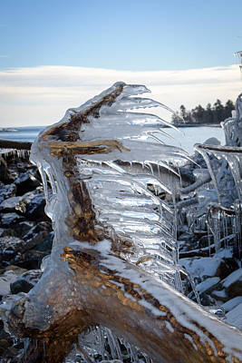 Photograph - Icy Claw by Jill Laudenslager
