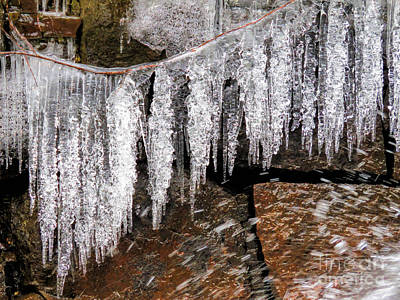Photograph - Icy Clothesline by Janice Drew