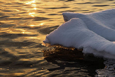 Photograph - Icy Gold And Silk - Luminous Icicles Reflected On Glossy Water by Georgia Mizuleva