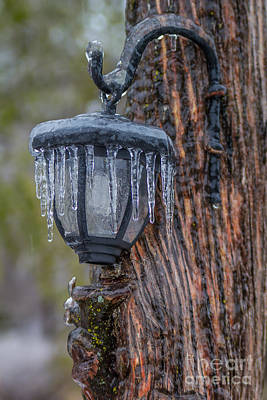 Photograph - Icy Lantern by Jim McCain