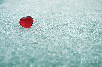 Photograph - Icy Red Heart by Liz Masoner