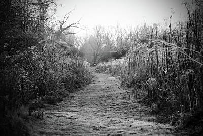Photograph - Icy Trail In Black And White by Brooke T Ryan
