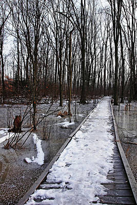 Photograph - Icy Walk by Debbie Oppermann