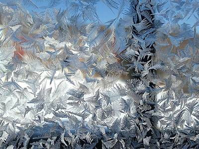 Wall Art - Photograph - Icy Window_6678 by Judith Z Miller