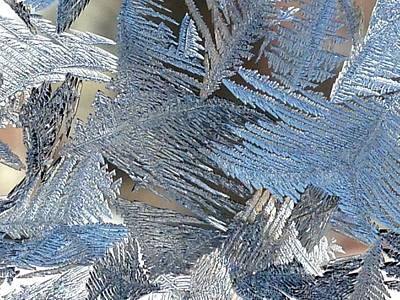 Wall Art - Photograph - Icy Window_6696 by Judith Z Miller