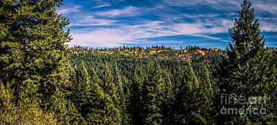 Gravel Road Photograph - Idaho Backcountry by Robert Bales