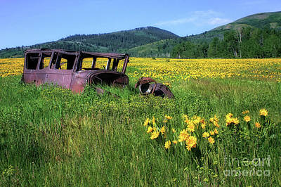 Photograph - Idaho Delivery Truck by Roxie Crouch